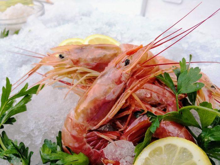 gambero intero argentina 24fish