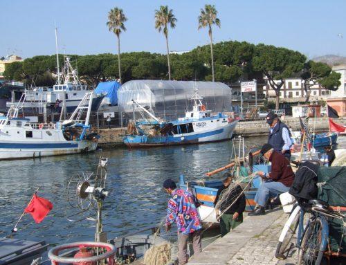 I porti di 24Fish: Terracina