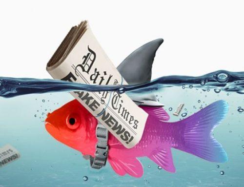 Fake news sul pesce. Alcuni miti da sfatare.